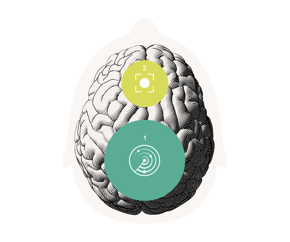 脳に存在する2つの聴覚サブシステム