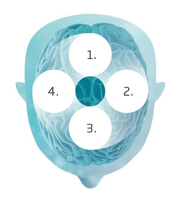 how-brainhearing-transforms-600x671